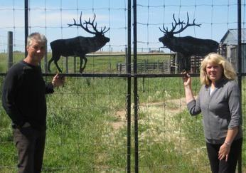 Perry and Lori Ulrich owners of Country Gold Elk Velvet Antler